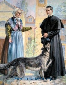 Don Bosco and the Gray (dog)