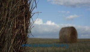 """""""I due mondi"""" (usata Canon EOS 5D Mark II, con zoom Canon 24-105mm - Roma, 2014)"""